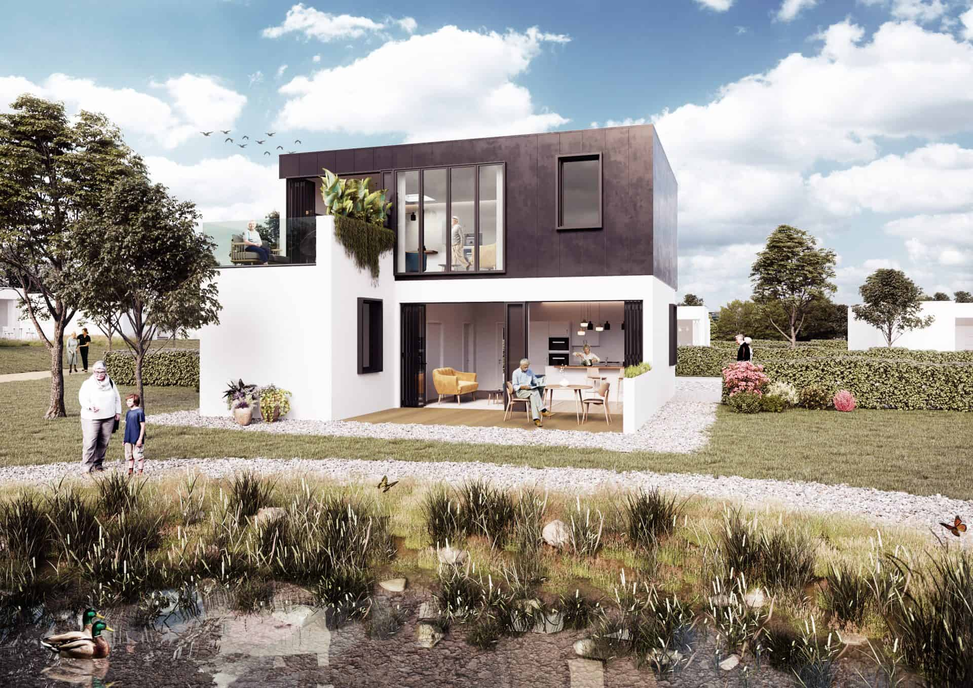 Lungfish architects residential housing design